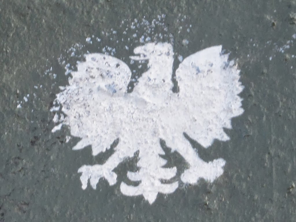 the crowned eagle as a symbol of poland katrina shawver